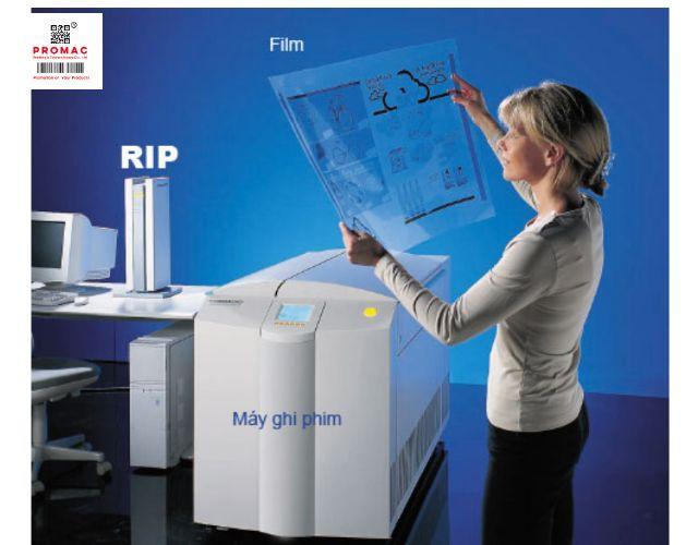 phương pháp bình phim trong in ấn