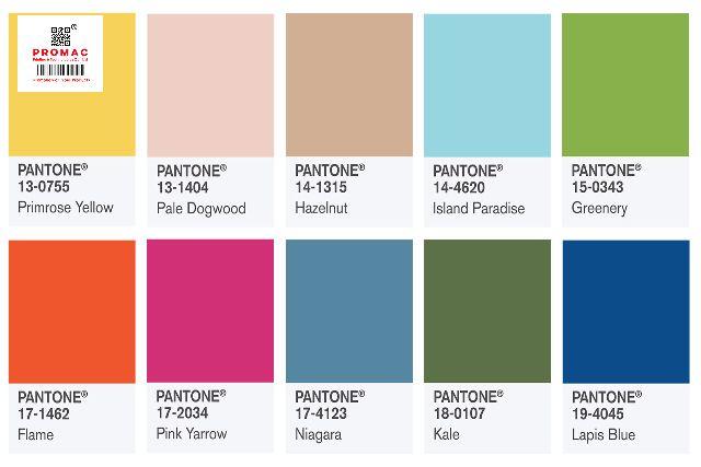 hệ màu pantone trong in ấn